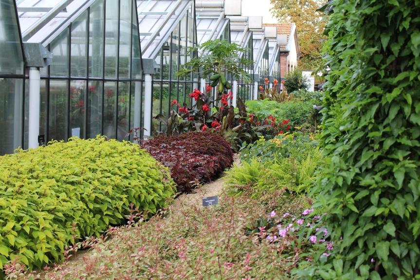 Journées Européennes du Patrimoine : Les serres du jardin du Luxembourg et l'Hôtel deVendôme