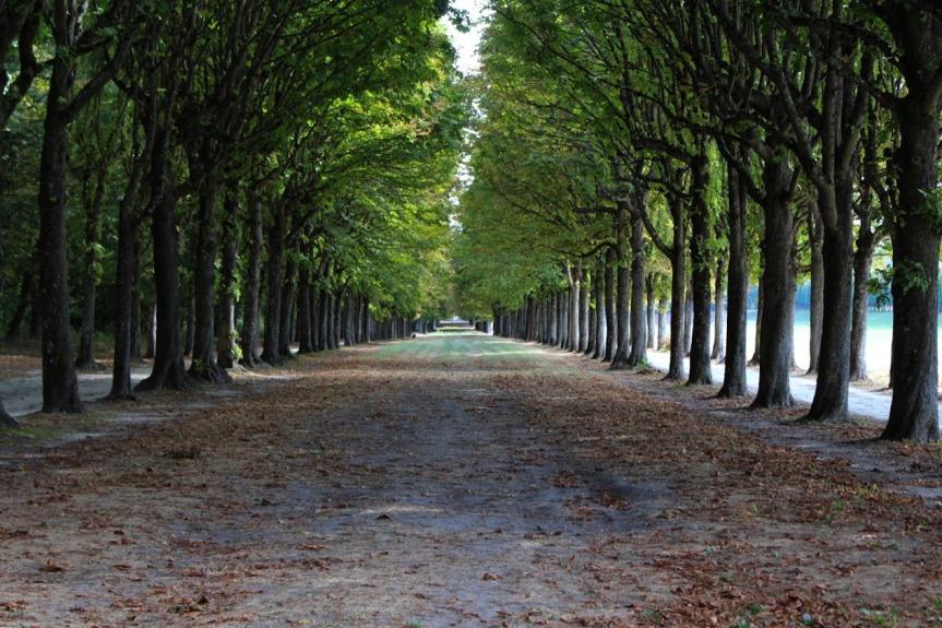 Fontainebleau – Parc duChâteau