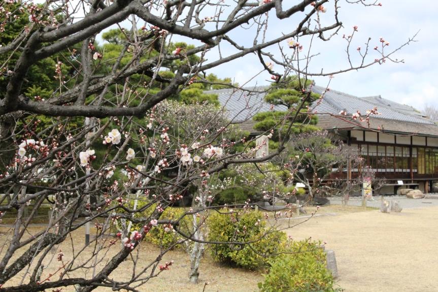 Kyoto : Le jardin Shosei-en